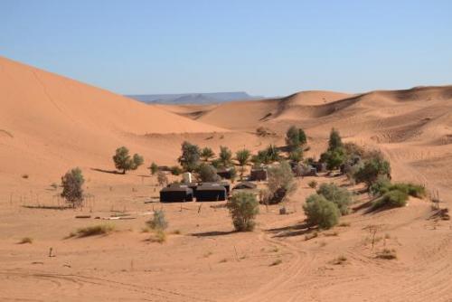 sahara-exploring